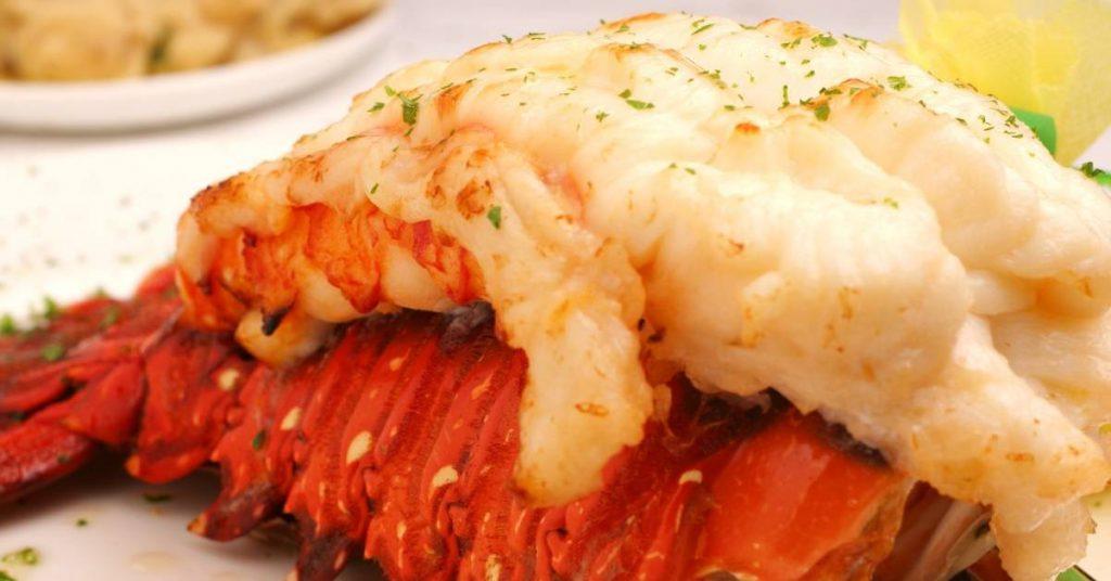 Conseils pour des recettes de queue de homard parfaites.